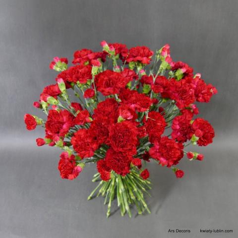 https://www.kwiaty-lublin.com/images/kwiaty/2000-3000/Bukiet-roze-i-eustomy-BI-034-04-04_%5B2868%5D_480.jpg